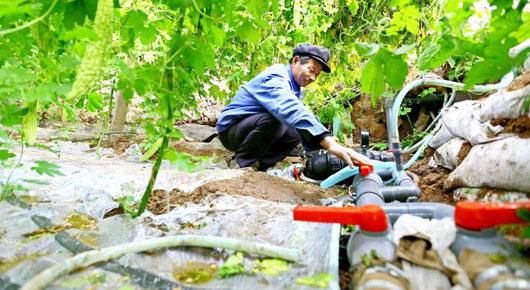 我市成功创建为省级高效节水灌溉示范县