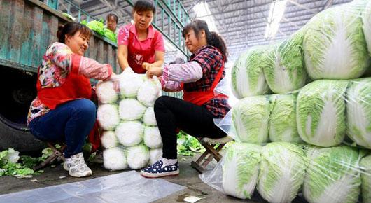 近期蔬菜价格稳中趋降