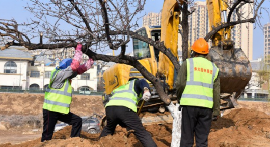 寿光园林建设集团:掀起春季绿化建设新高潮