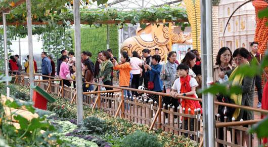 菜博会首周末接待游客16.6万人次